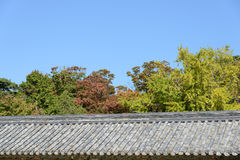 Tiled roof with trees Royalty Free Stock Photography