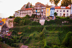 Tiled roofs in Porto. The Douro River. Summer city landscape. Stock Images