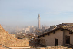Tiled roofs of Siena and Torre del Mangia in fog on background. Tuscany. Italy. royalty free stock image