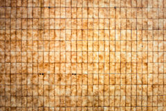 Tiled wall. A tiled wall background as a unique background image Stock Image