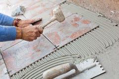 Tiler, который нужно работать с настилом плитки Стоковое Фото
