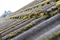 Tiles Covered With Moss Stock Photos