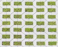 Tiles with grass Royalty Free Stock Photos