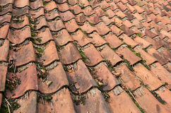 Tiles on a house. Stock Image