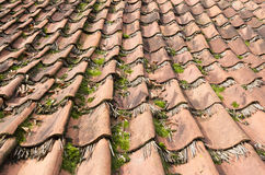 Tiles on a house. Stock Photography