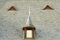 Tiles on old castle roof Stock Images
