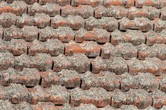 Tiles On A Roof stock images