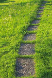 Tiles walkway in the lawn Royalty Free Stock Photography