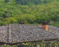 Tilingsdach, das einen Wald gegenüberstellt Lizenzfreie Stockbilder
