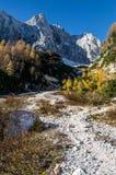 Till bergen Arkivbild