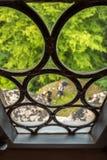 Till och med ett gammalt fönster royaltyfria foton