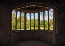 Till och med historiskt fjärdfönster till träd och gräs arkivfoto