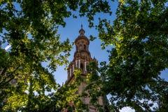 Till och med träden på Plaza de Espana i Seville, Spanien arkivfoton