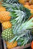 Till salu ananas Royaltyfri Bild