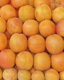 Till salu closeup för nya aprikors Royaltyfri Foto