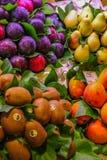 Till salu frukt royaltyfri foto