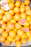 Till salu grapefrukt Arkivbilder