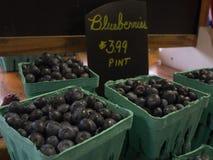 Till salu halva liter för blåbär Royaltyfri Fotografi