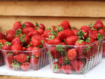 Till salu jordgubbar Arkivbilder