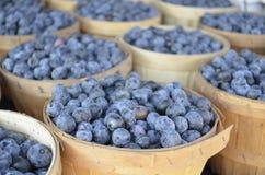 Till salu nya blåbär Arkivbild
