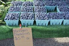 Till salu nya blåbär Arkivfoton