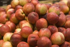 Till salu persikor Arkivfoton
