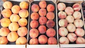 Till salu persikor och aprikors fotografering för bildbyråer
