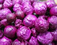 Till salu purpurfärgad kål Royaltyfri Bild