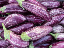 Till salu purpurfärgade aubergine, grekisk gatamarknad Arkivfoto