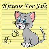 Till salu showkatter för kattungar på marknad och annonseringen royaltyfri illustrationer