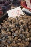 Till salu Snails Arkivbild