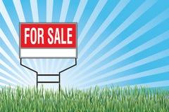 Till salu underteckna in gräs Fotografering för Bildbyråer