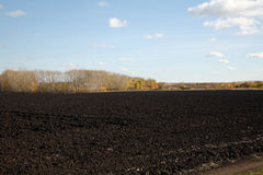 Tillage. Arable earth (black earth) in autumn after harvesting Stock Photo