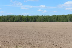 Tillage field and blue sky. And forest on the horizon Stock Photos
