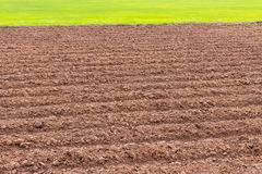 Tillage preparation plant. View the background surface soil that was plowing a furrow in preparation for planting crops Royalty Free Stock Photography