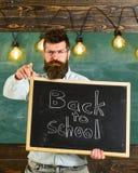 tillbaka begreppsskola till Läraren i glasögon rymmer svart tavla med inskriften tillbaka till skolan Man med skägget och Arkivbild