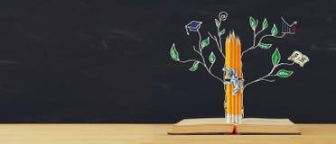 tillbaka begreppsskola till trädet av kunskap skissar och blyertspennor över den öppna boken framme av klassrumsvart tavla royaltyfri foto