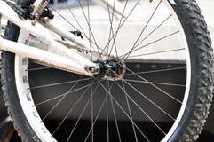 Tillbaka hjul Royaltyfri Bild