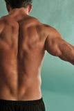 tillbaka male muskelsträckning arkivbild