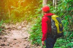Tillbaka sida av handelsresandemannen i skog som fotvandrar semestrar f?r sommar f?r aff?rsf?retag f?r lopplivsstilbegrepp utomhu royaltyfri fotografi