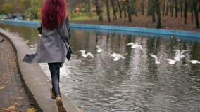 Tillbaka sikt av den unga kvinnan med röd hårspring in mot fiskmåsar i ett konstgjord damm och danande dem klipskt bort Dimma på  stock video