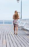 Tillbaka sikt av den unga kvinnlign med härligt blont rakt långt hår Royaltyfri Foto