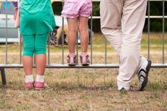 Tillbaka sikt av en hållande ögonen på show för familj royaltyfri fotografi