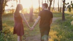 Tillbaka sikt av ett lyckligt par som går i skoginnehavhänderna på solnedgången Långsam mo Steadicam skott stock video