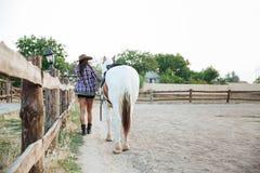 Tillbaka sikt av kvinnacowgirlen som går med hästen Royaltyfri Foto