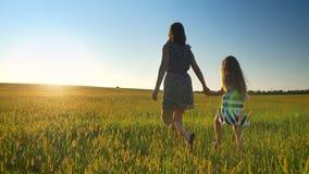 Tillbaka sikt av modern som går samman med små dotter- och innehavhänder på vete- eller rågfält under härligt lager videofilmer