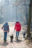 Tillbaka sikt av två tonåriga flickor som går med hundkapplöpning - kall morgon t arkivfoton