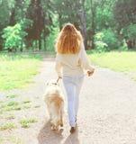 Tillbaka siktsägarekvinna och golden retrieverhund som går i vår arkivbild