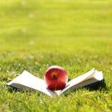 tillbaka skola till Öppna boken och Apple på gräs Royaltyfria Bilder