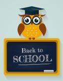 tillbaka skola till Kort med ugglan och svart tavla Vektor Illustratio Royaltyfria Foton